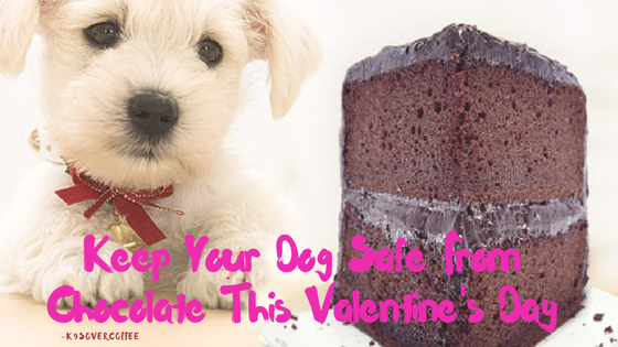 http://www.k9sovercoffee.com/wp-content/uploads/2015/02/K9sOverCoffee-Keep-Your-Dog-Safe-From-Chocolate-This-Valentines-Day.png