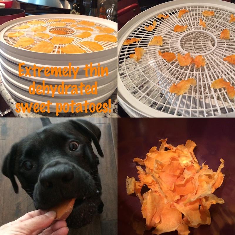 Homemade Dehydrated Dog Treats Recipes
