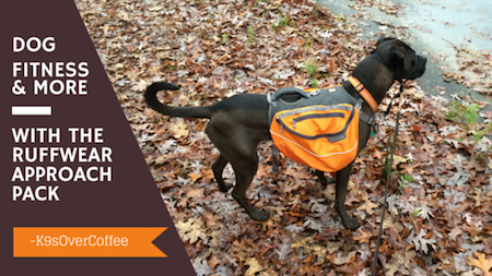 K9sOverCoffee | Dog Fitness and More With The Ruffwear Approach Pack