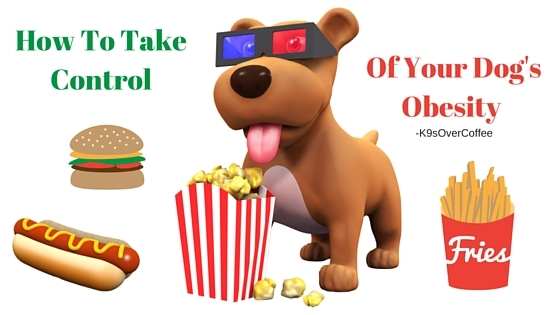 K9sOverCoffee | How To Take Control Of Your Dog's Obesity