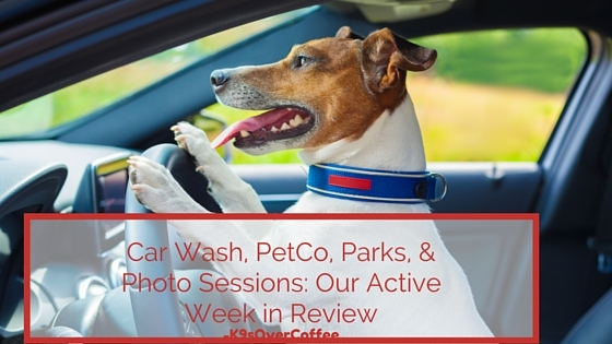 Car wash petco parks photo sessions our active week in review solutioingenieria Choice Image
