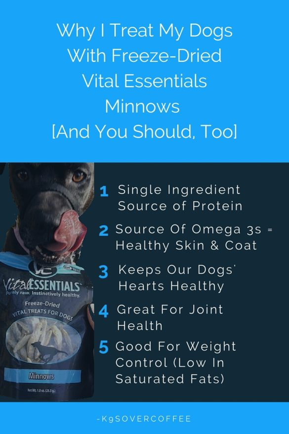 K9sOverCoffee | Why I Treat My Dogs With Freeze-Dried Vital Essentials Minnows [And You Should, Too]