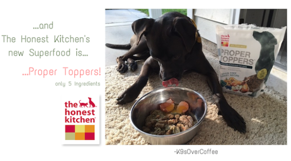 K9sOverCoffee   ...and The Honest Kitchen's new Superfood is...Proper Toppers!