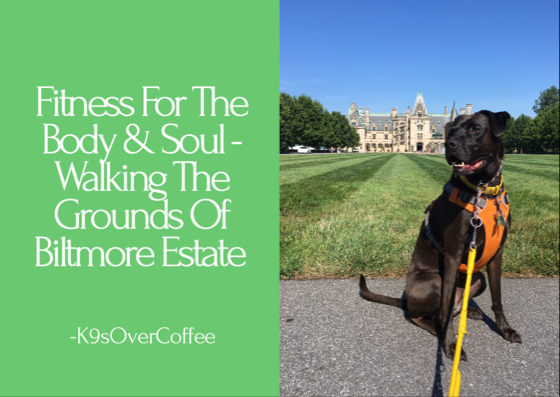 K9sOverCoffee | Fitness For The Body & Soul - Walking The Grounds Of Biltmore Estate
