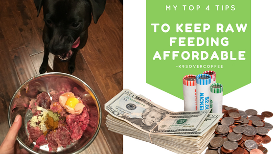 http://www.k9sovercoffee.com/wp-content/uploads/2016/08/K9sOverCoffee-My-Top-4-Tips-To-Keep-Raw-Feeding-Affordable.png
