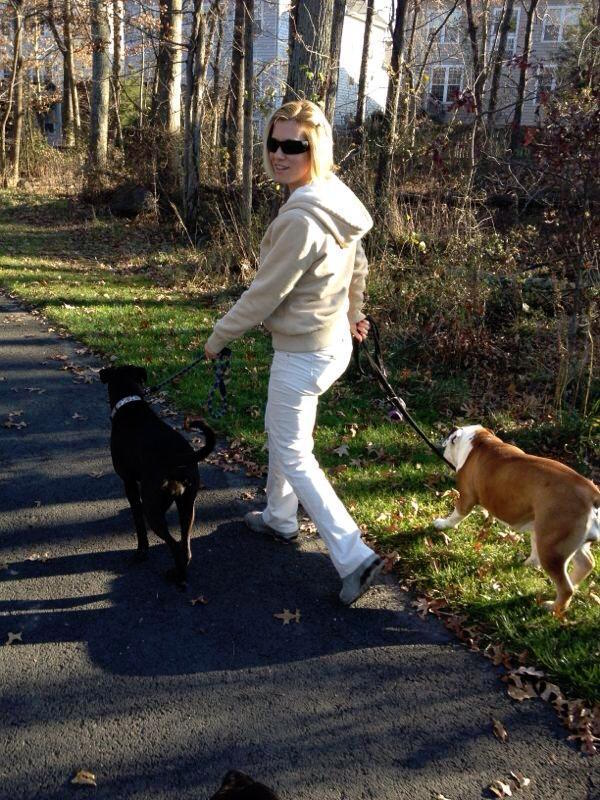 K9sOverCoffee | Going For A Walk With Missy And Ada, A Friend's Bulldog