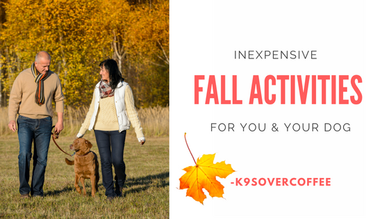 K9sOverCoffee | Inexpensive Fall Activities For You & Your Dog