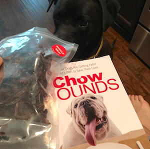 K9sOverCoffee | Reading Chow Hounds by Ernie Ward, DVM