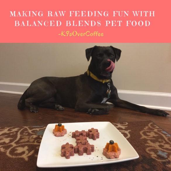 K9sOverCoffee Makes Raw Feeding Fun With Balanced Blends Pet Food