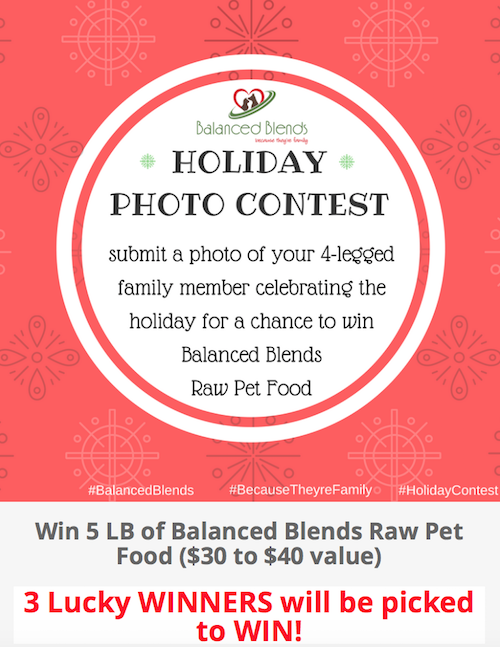 K9sOverCoffee | Balanced Blends Holiday Photo Contest