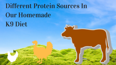 K9sOverCoffee | Different Protein Sources In Our Homemade K9 Diet