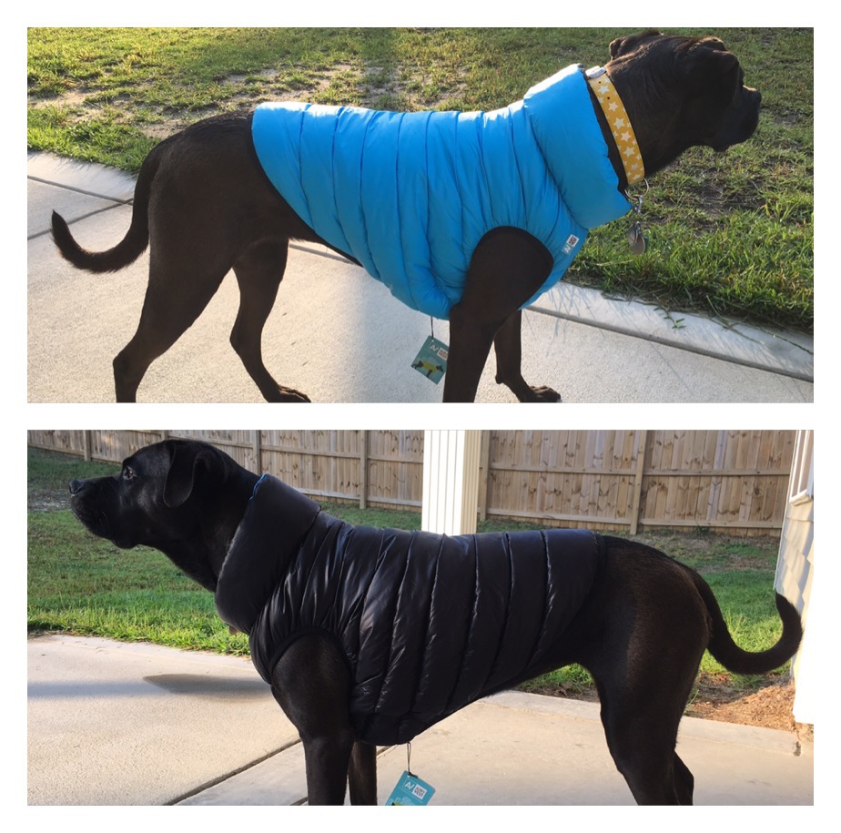 K9sOverCoffee | Missy Wearing CoLLaR's Reversible Airy Vest Jacket