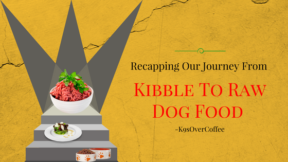 K9sOverCoffee | Recapping Our Journey From Kibble To Raw Dog Food