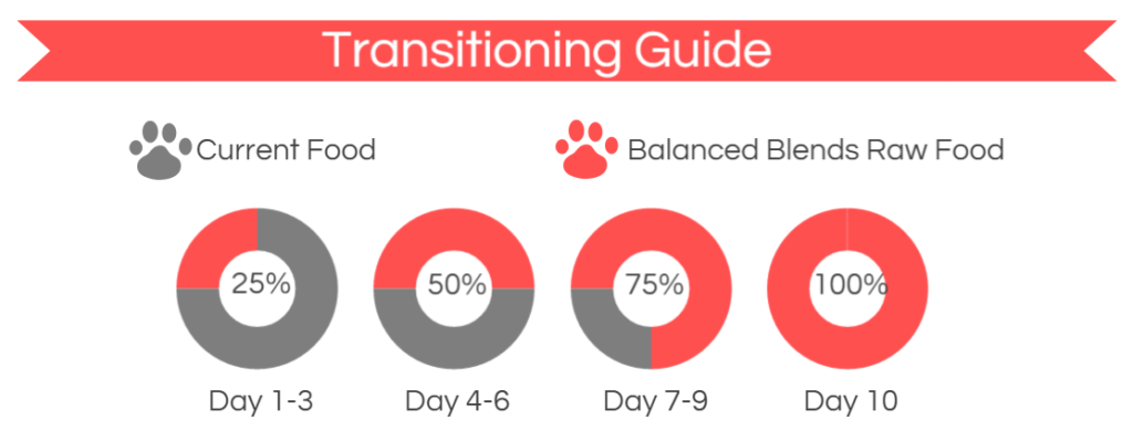 K9sOverCoffee | Transitioning Dogs From Their Current Food To Balanced Blends Raw Food
