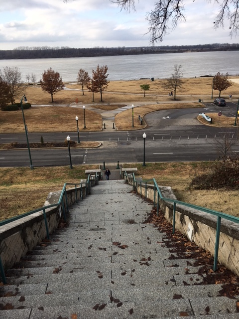 K9sOverCoffee | Walking In Memphis with 2 dogs in tow - Panoramic View Of The Mississippi From The Top Of RiverFit Stairs at Butler Park