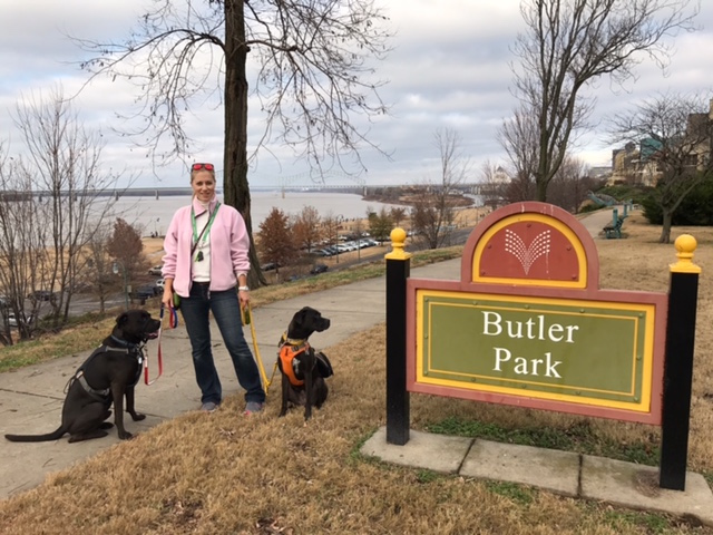 K9sOverCoffee | Walking In Memphis with 2 dogs in tow - Panoramic View Of The Mississippi River From Butler Park