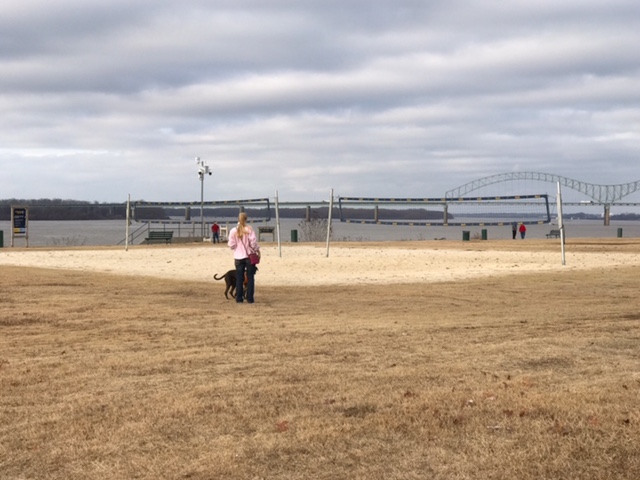 K9sOverCoffee | Walking in Memphis with 2 dogs in tow - Mommy & Missy In Front Of A Beach Volleyball Court At RiverFIT