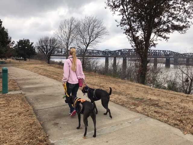 K9sOverCoffee | Walking in Memphis with 2 dogs in tow - Mommy walking Missy & Buzz along the Mississippi