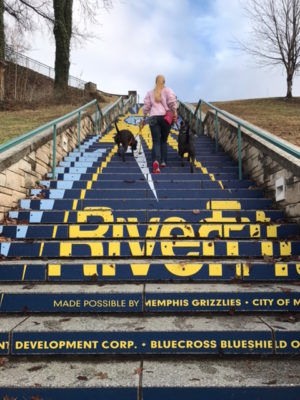 K9sOverCoffee | Walking in Memphis with 2 dogs in tow - Walking Up The RiverFit Stairs