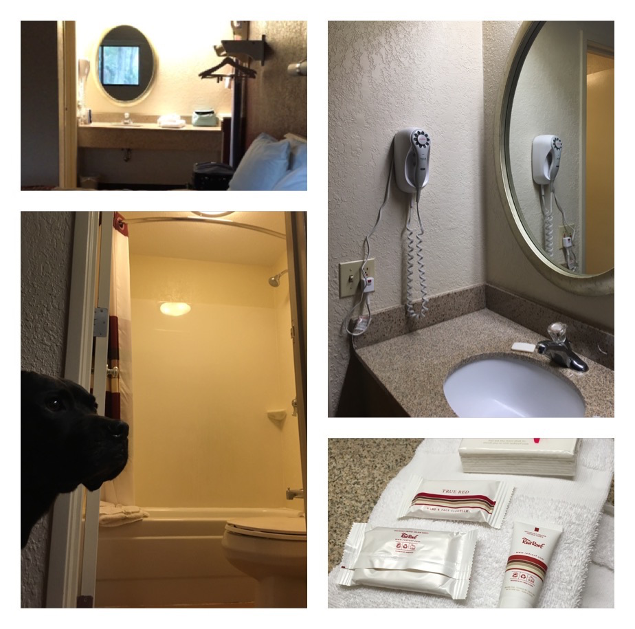 K9sOverCoffee | Winter Getaway to Hilton Head Island's Dog-Friendly Red Roof Inn - Bathroom Features