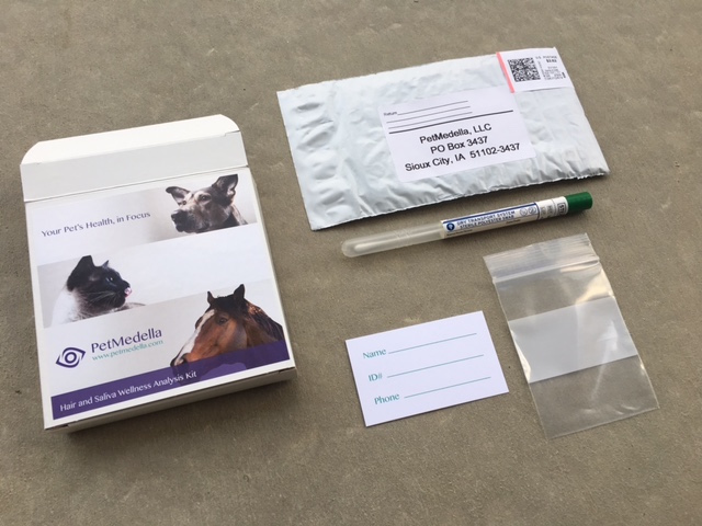 K9sOverCoffee | I Found Out What My Dog Is Allergic To With Pet Medella's Bioenergetic Scan - Wellness Kit