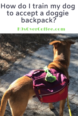 K9sOverCoffee.com   How do I train my dog to accept a doggie backpack?