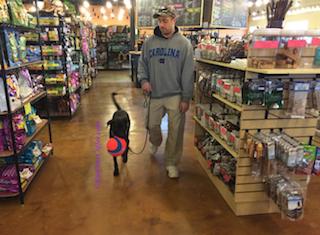 Buzz_shopping_for_chuckitball
