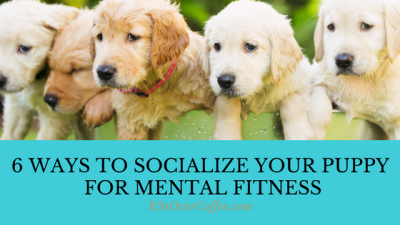 K9sOverCoffee | 6 Ways To Socialize Your Puppy For Mental Fitness
