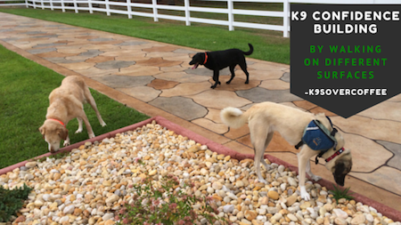 K9 Confidence Building By Walking On Different Surfaces