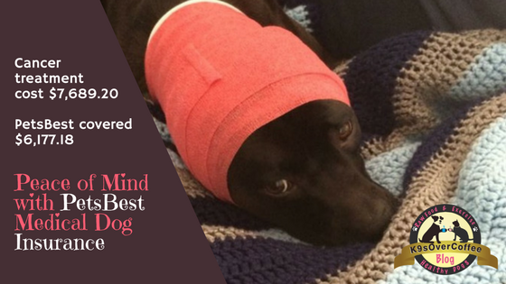 K9sOverCoffee | Peace of Mind with PetsBest Medical Dog Insurance