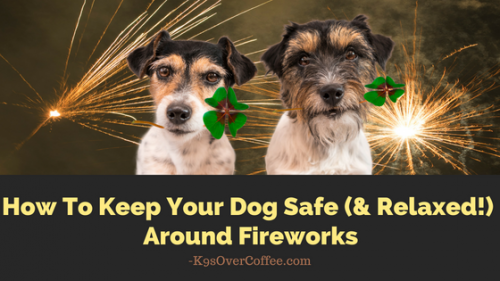 How To Keep Your Dog Safe & Relaxed Around Fireworks
