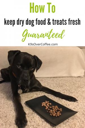 K9sOverCoffee.com | How To Keep Dry Dog Food & Treats Fresh Guaranteed