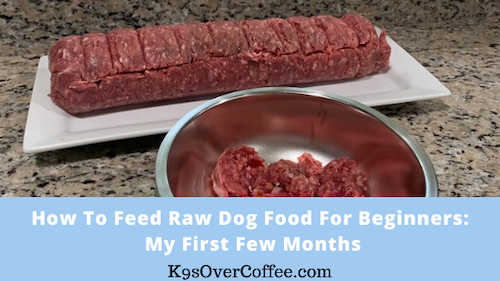 K9sOverCoffee | How to feed raw dog food beginners: my first few months