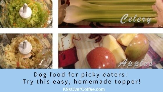 K9sOverCoffee | Dog food for picky eaters/ Try this easy, homemade topper!