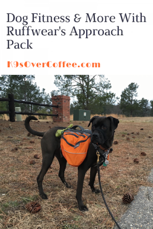K9sOverCoffee.com   Dog Fitness & More With Ruffwear's Approach Pack