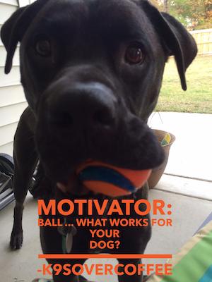 Motivator Ball