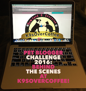 Pet Blogger Challenge 2016 - Behind The Scenes At K9sOverCoffee