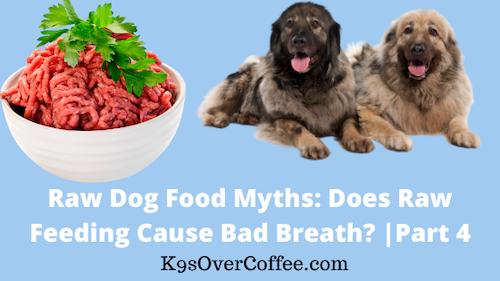 K9sOverCoffee | Raw Dog Food Myths: Does Raw Feeding Cause Bad Breath? Part 4/5