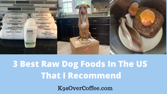 K9sOverCoffee | 3 Best Raw Dog Foods In The US That I Recommend