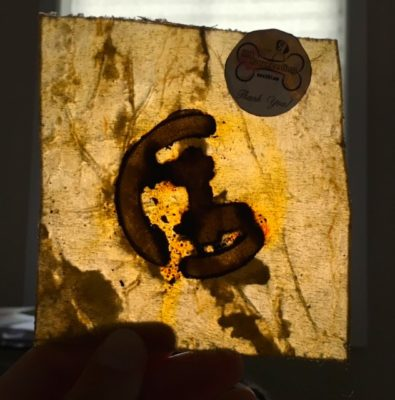 Amber Colored Organic Rawhide From K9RawFeeding