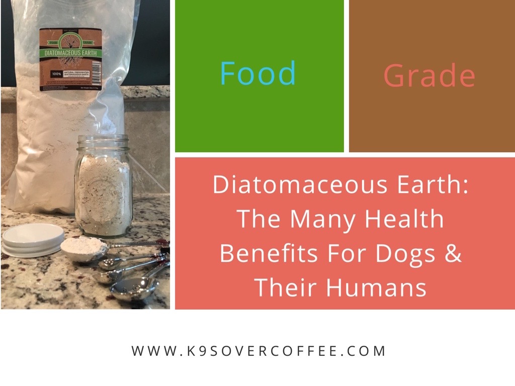 K9sOverCoffee | Food-Grade Diatomaceous Earth: The Many Health Benefits For Dogs And Their Humans