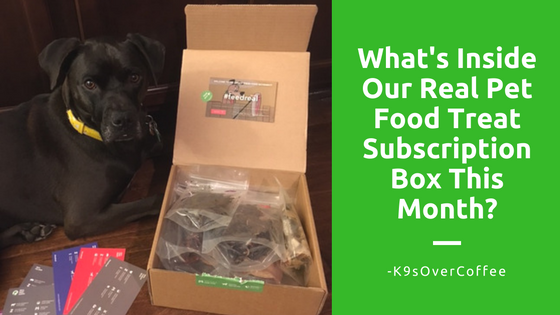 K9sOverCoffee | What's Inside Our Real Pet Food Treat Subscription Box This Month?