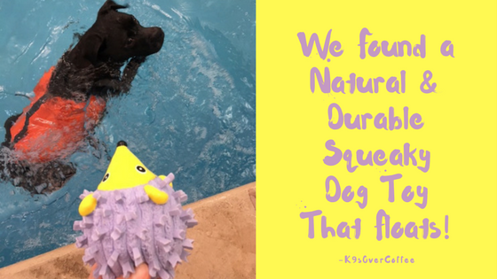 K9sOverCoffee | We Found A Natural & Durable Squeaky Dog Toy That Floats!