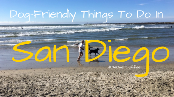 K9sOverCoffee | Dog-Friendly Things To Do In San Diego