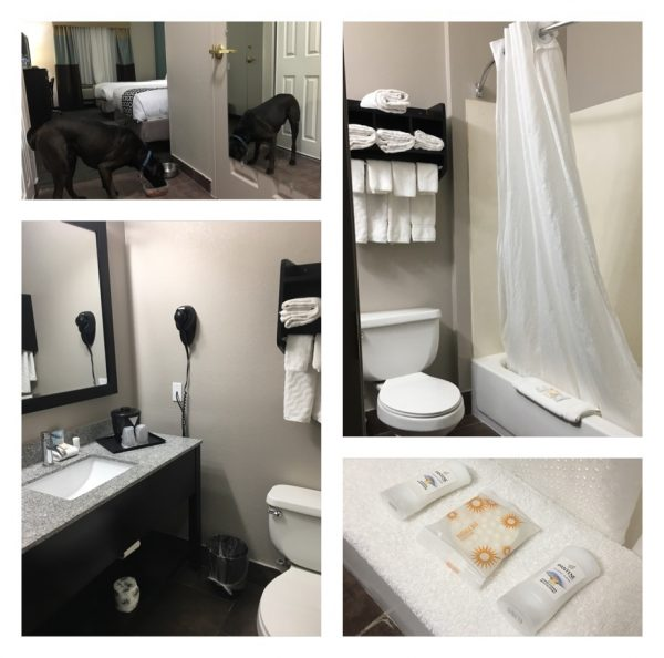 Our First Experience At Pet-Friendly La Quinta Inns & Suites - Our Bathroom