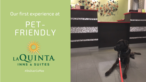 K9sOverCoffee | Our First Experience At Pet-Friendly La Quinta Inns & Suites