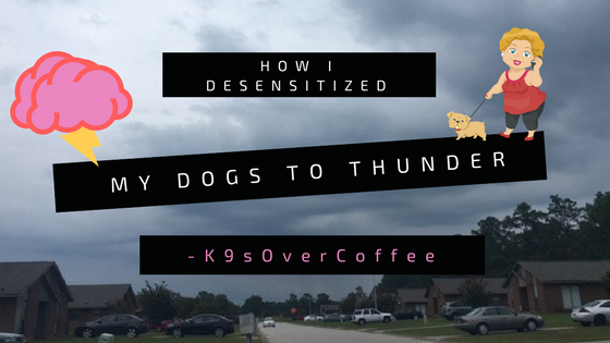 K9sOverCoffee | How I Desensitized My Dogs To Thunder