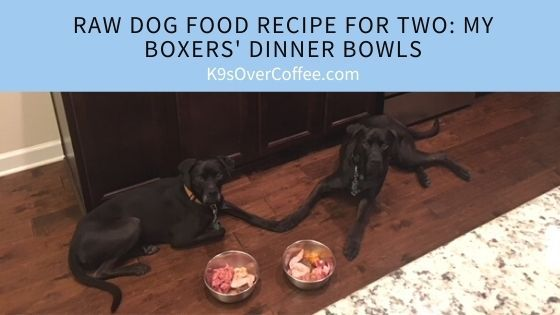 Raw Dog Food Recipe for Two: My Boxers' Dinner Bowls
