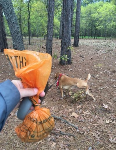K9sOverCoffee   Mighty Paw's New Sturdy Poop Bags