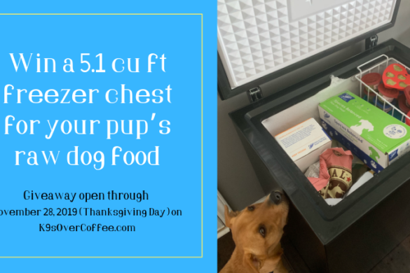 K9sOverCoffee | Win a 5.1 cu ft freezer chest for your pup's raw dog food